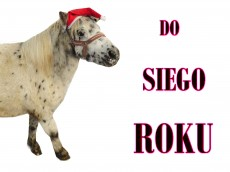 DO_SIEGO_ROKU