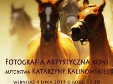 Plakat_fot_koni_druk (1)