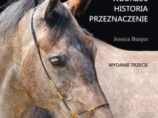 Rasy koni-w3A.cdr