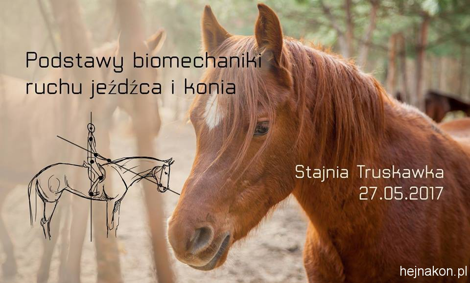 biomechanika-foto